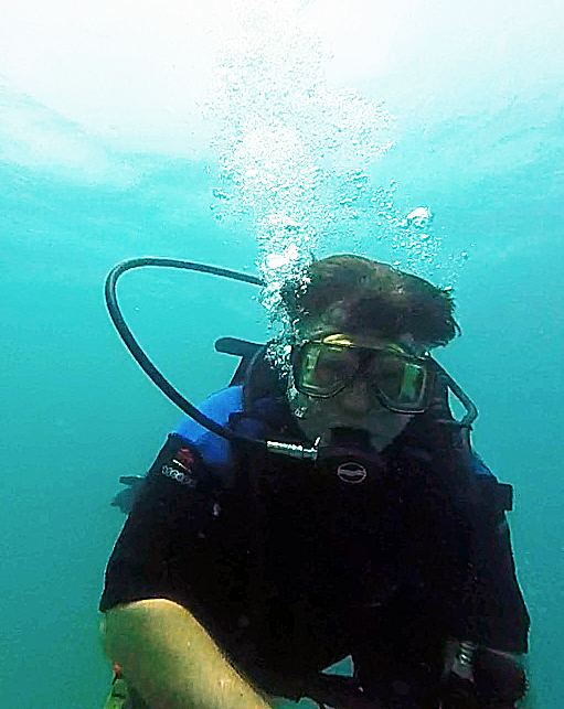 term paper on scuba diving Recreational scuba diving, patent foramen ovale and their associated risks (pdf)  there is ongoing debate about the long term risk of scuba diving.