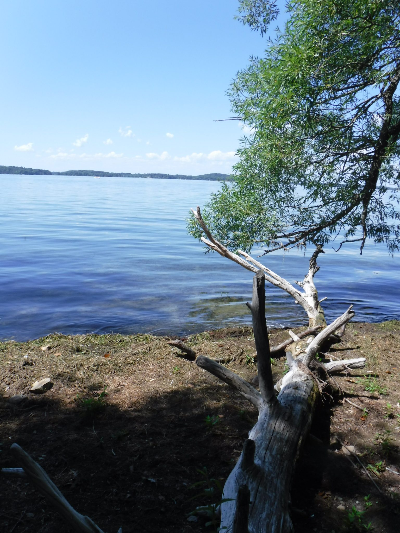 Wellesley Island State Park: The park is located in the Thousand Islands region of New York in the middle of the Saint Lawrence River.